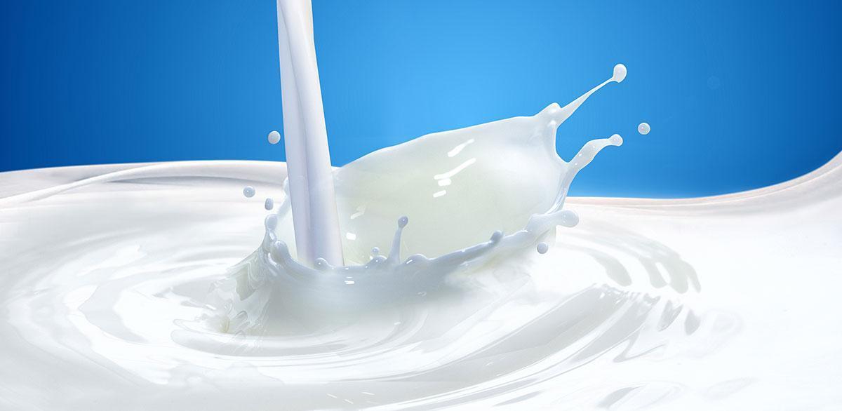 Maitoa kaadetaan.